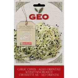 Geo - Seminte germinare usturoi bio x 6g
