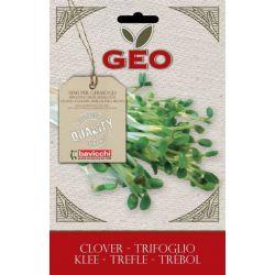 Geo - Seminte germinare trifoi bio x 50g