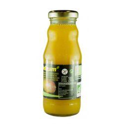 DZ347 Delizum-ECO Nectar de mango si aloe vera 200ml